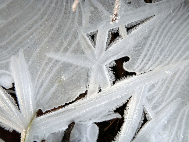 Ice Shapes